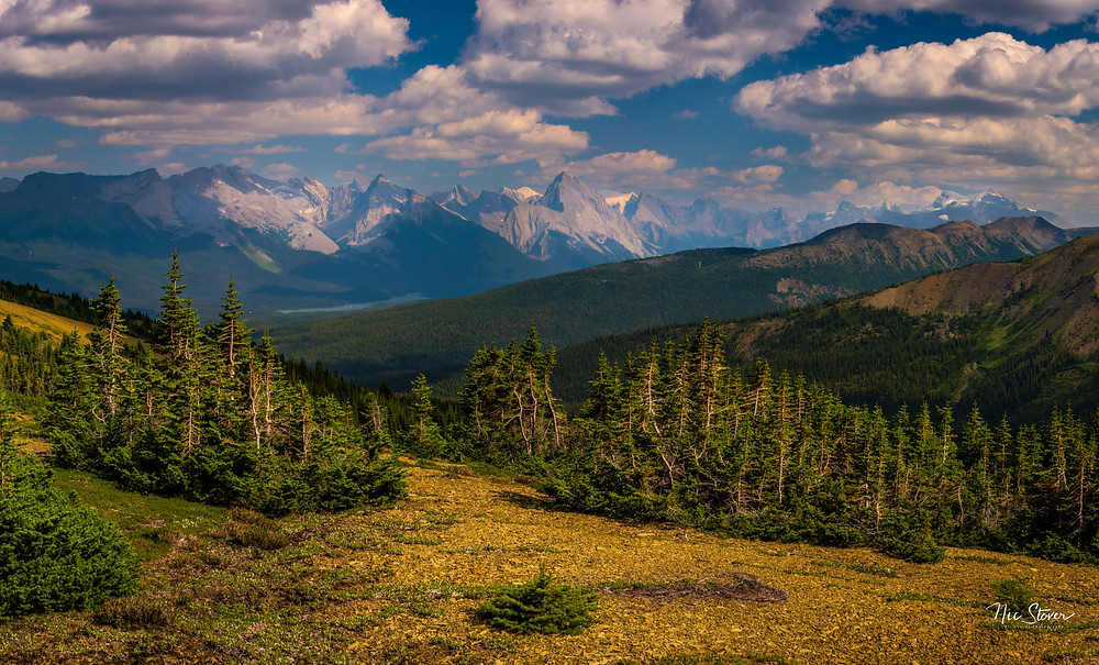 Skyline Trail, Jasper National Park - Paradox Travel   See complete photography road trip itinerary including trail recommendations at www.paradoxtravels.com   Photo: Nic Stover photography
