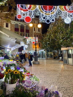 Cadiz, Spain Flower Market  See full Southern Spain road trip itinerary at Paradox Travels