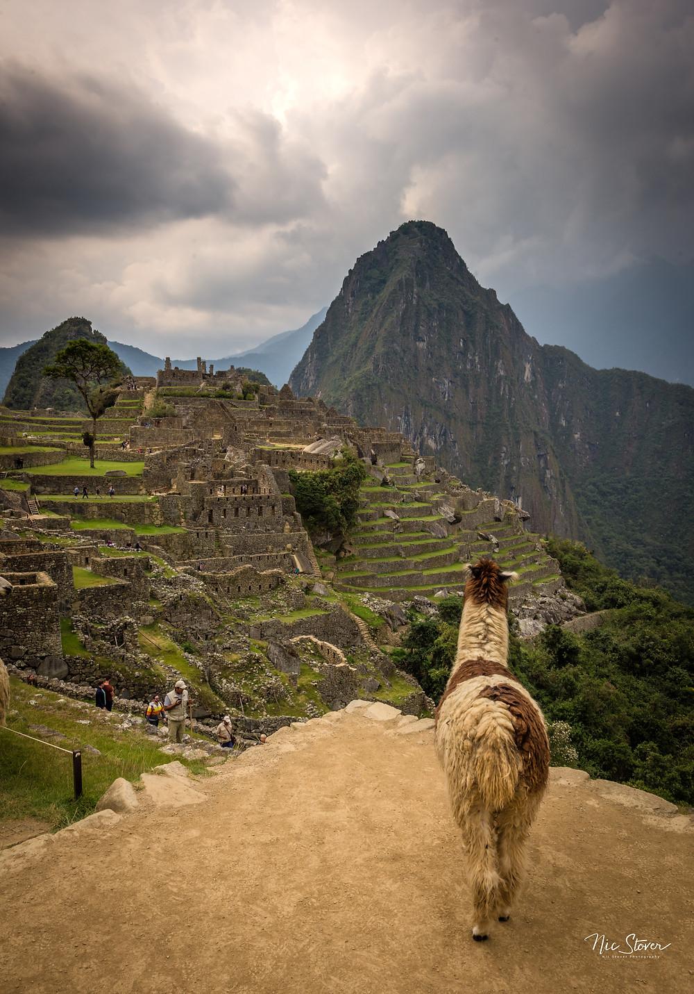 Machu Picchu, Peru -  photo credit www.stoverphoto.com