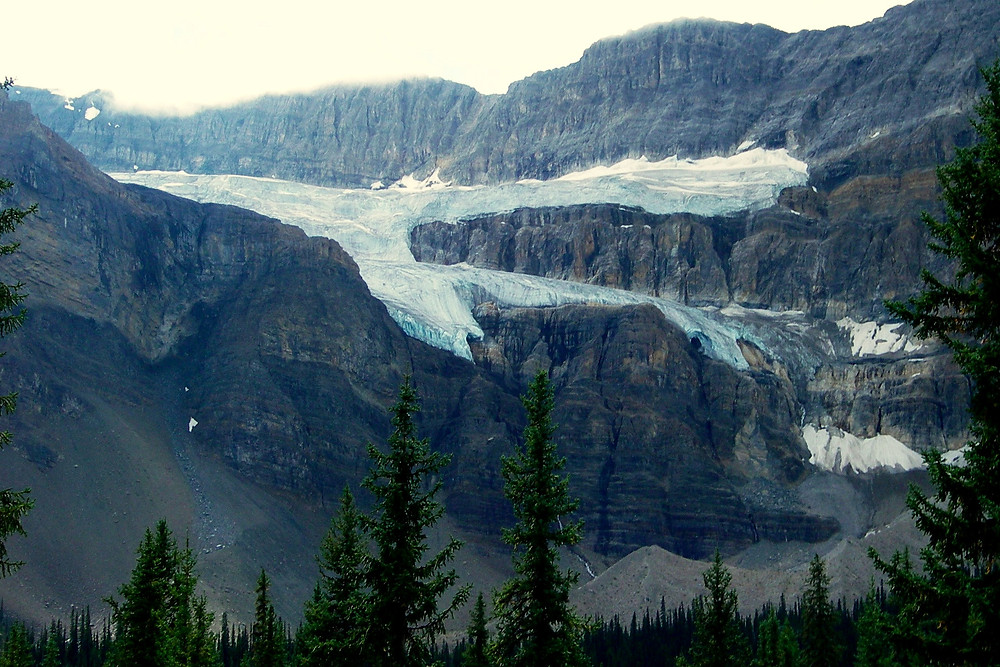Crowfoot Glacier - go see it before it disappears