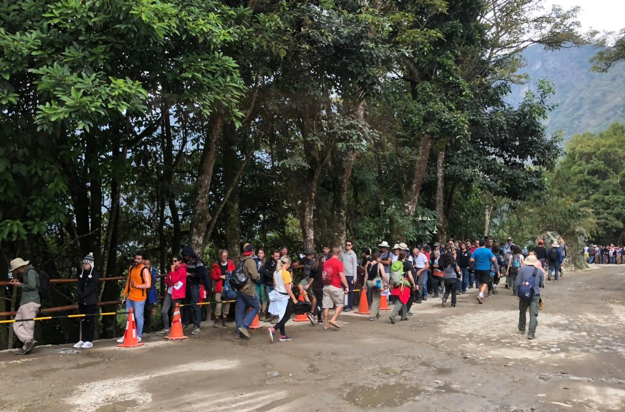 Machu Picchu bus lines