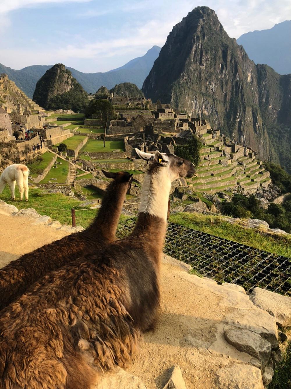 Machu Picchu, Peru - photo credit www.paradoxtravels.com