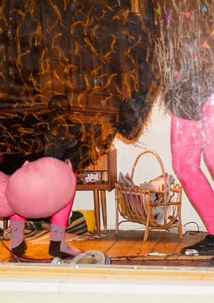Skiwi & Cocobutt's party