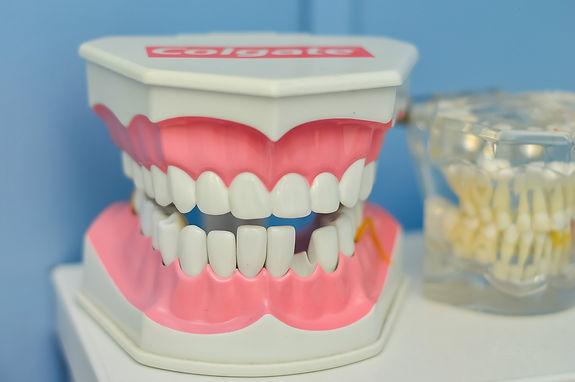 mouth-1437426_1920.jpg