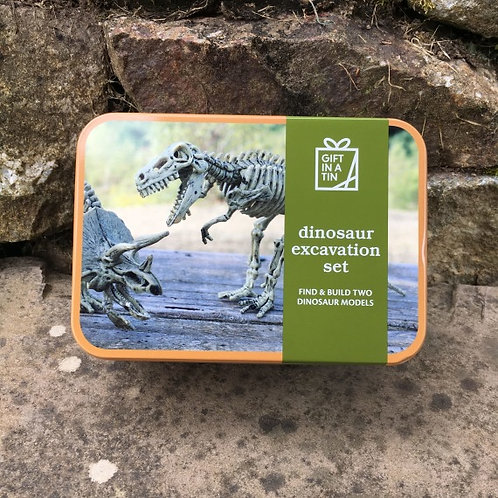Gift in a Tin: Dinosaur Excavation Kit