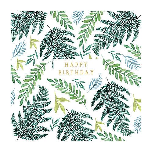 Natural Phenomenon 'Ferns' Card
