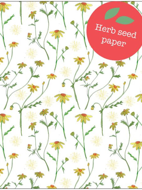 'Chamomile' Seed Card by Hannah Marchant