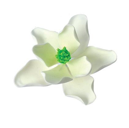 Magnolia, White with Green centre 4 inch
