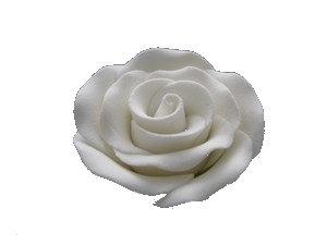 Alice Rose Large, White 1-3/4 inch 9 pcs