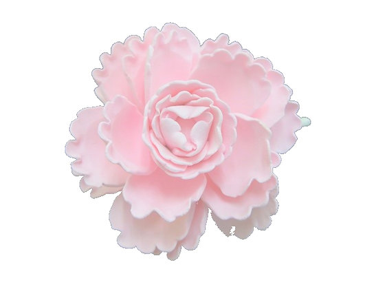 Giant Peony, Pink 5 inch