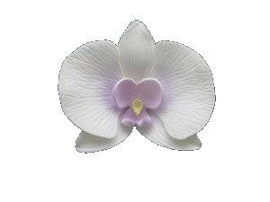 Close Moth, White w/ Pastel Purple 3.5 inch