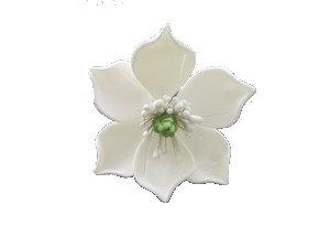 Magnolia, White with Green centre 3.5 inch