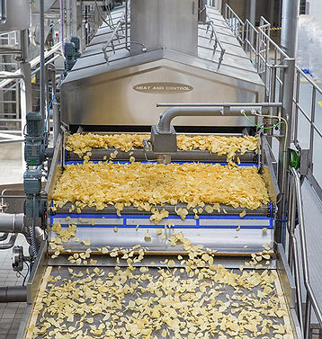 food-processing-overview.jpg