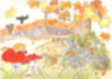 loking at the burrow autumn.jpg
