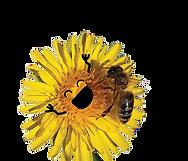Bienen.png