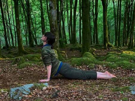 Yoga anywhere!