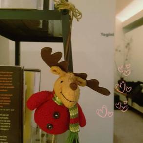Ayurveda Christmas Party 2017