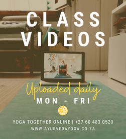 Yoga Anytime! Class Videos uploaded daily Q&A