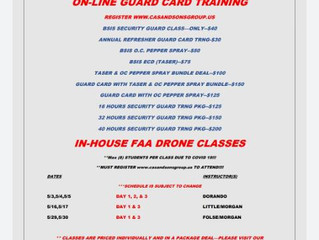 DISCOUNTED ON-LINE SECURITY CLASSES