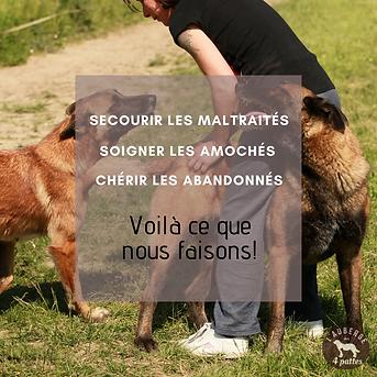 Porter_secours_aux_maltraités.png