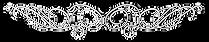 108052479-vector-filigree-frame-calligra