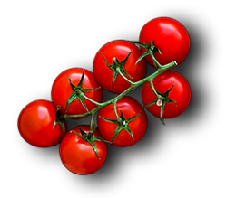 Tomato-Stack-Element.png