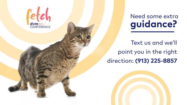 Fetch Digital Signage