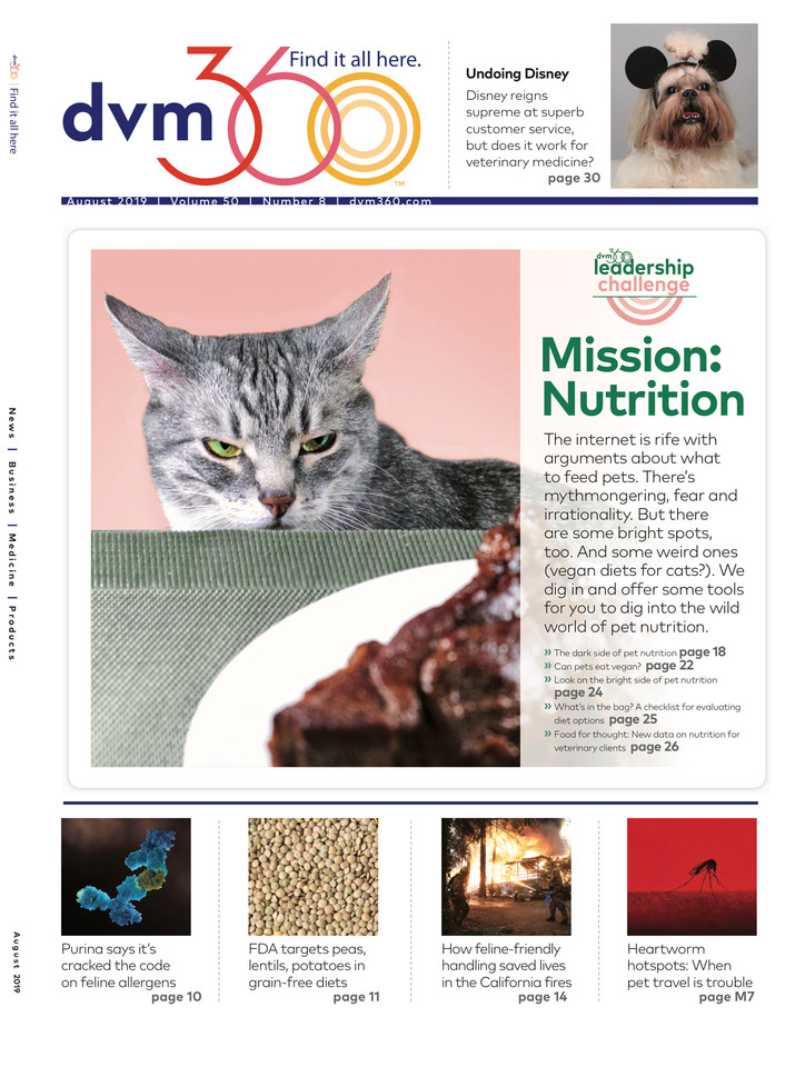 dvm360 August cover