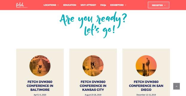 Fetch dvm360 conference website design and build