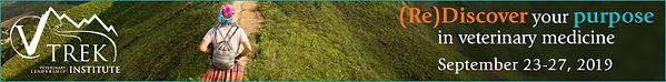 VLI-trek-leaderboard-728x90.jpg