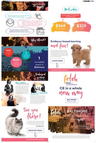 Fetch Baltimore Brochure