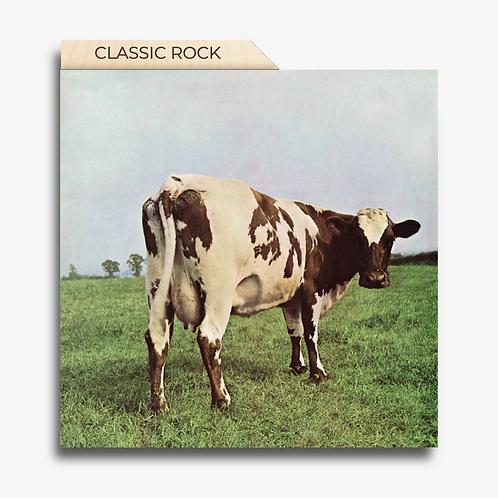 Vinyl Record Dividers          Classic Tab ~ set of 15