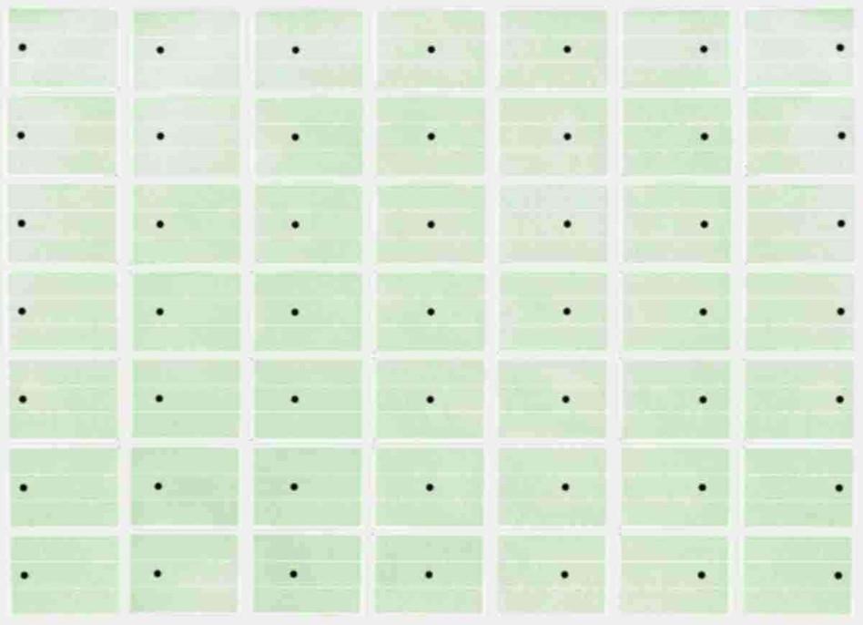 49 feuilles d'étiquettes, pastilles noires et feuilles colorées  21 x 29,7cm - 2006