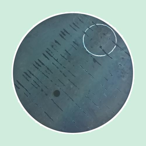 Peinture à l'huile et aimants sur acier 2mm - Ø 57cm - 2017