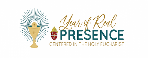Diocese Website Banner_0.png
