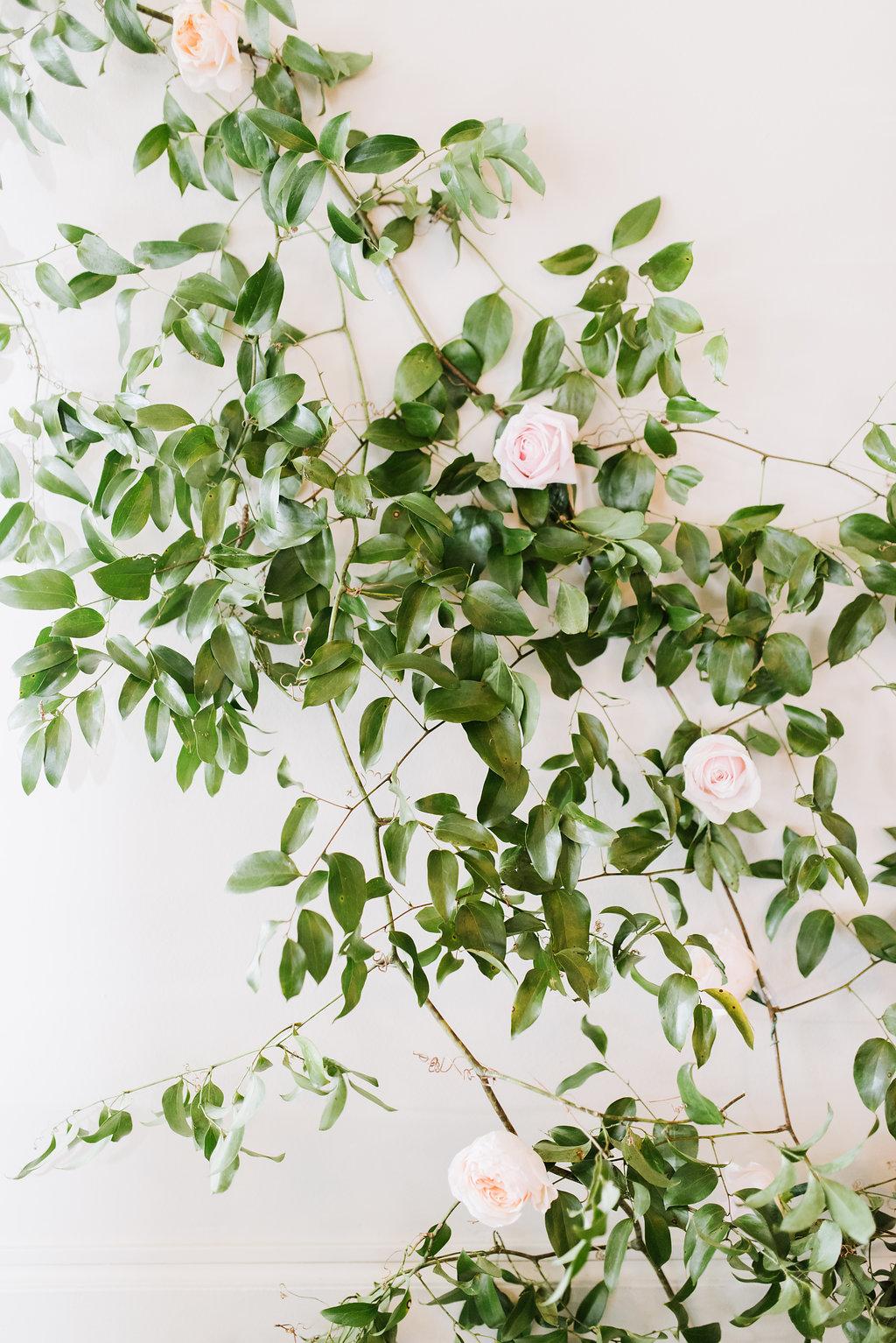 Aspen Florist Rose Wall