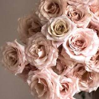 Dozen Quicksand Roses