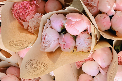 Mothers Day Peonies