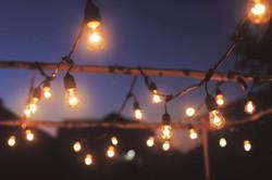 AF Birch Canopy w/ Edison Lights