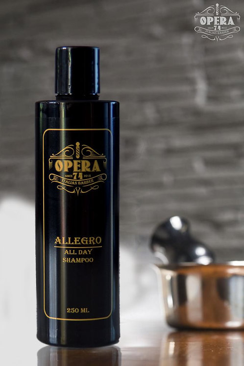 ALLEGRO - All day shampoo 250ml