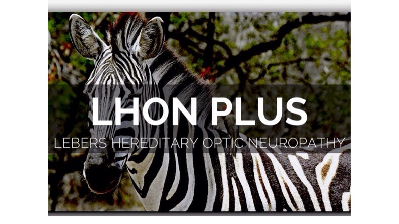 zebra lhon plus lebers hereditary optic neuropathy banner
