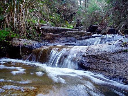 Waterfall Arthurs Seat State Park.jpeg