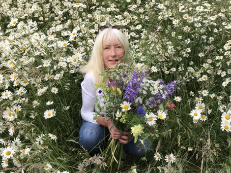 Come and look around the Devon Cottage Gardener's two acres for the Flower Farmers' Big Weekend