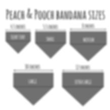 bandana sizes square NEW.jpg