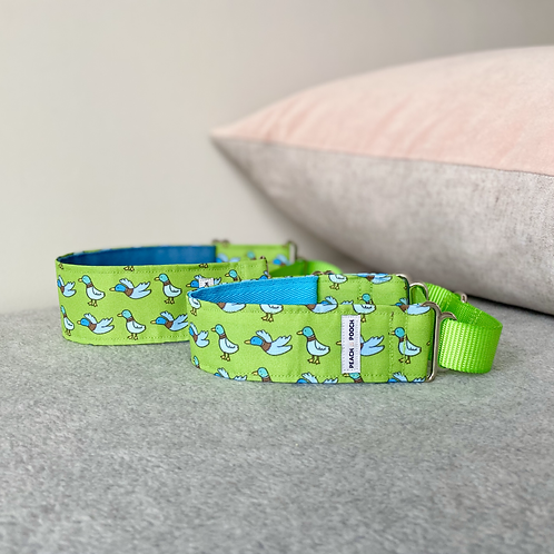What's Up Duck Martingale Collar