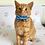 Thumbnail: Clowning Around Cat Collar