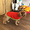 Thumbnail: Kittydog Drying Vest