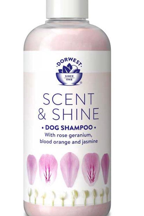 Dorwest Scent & Shine Shampoo 250ml