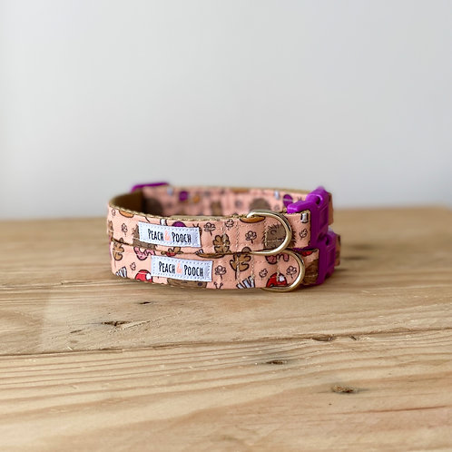 XS Feeling Hedgey Dog Collar