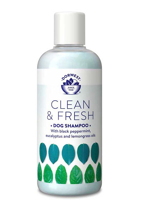 Dorwest Clean & Fresh Shampoo 250ml